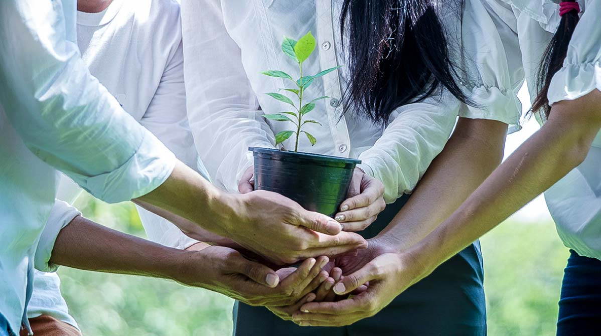 How CSR Impacts Employee Engagement