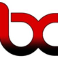 blimex-construction-logo