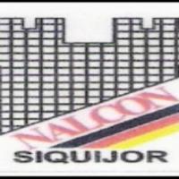 nale-construction-logo